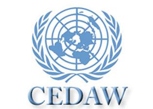 CEDAW (Comitê sobre a Eliminação da Discriminação contra as Mulheres) da ONU