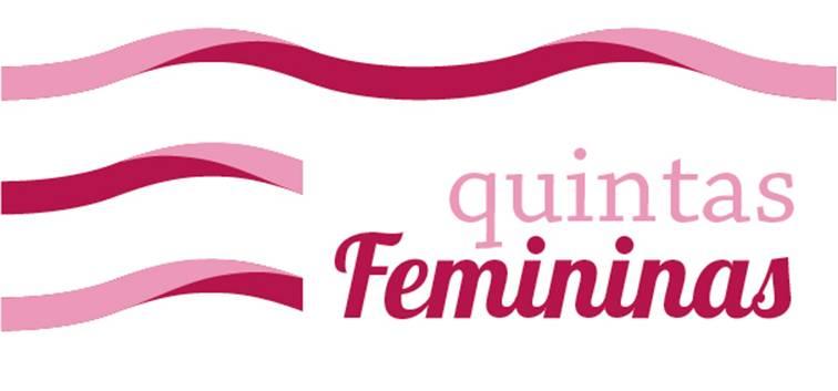 quintasfemininas_violencia