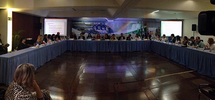 Representantes dos estados brasileiros participam da plenária final do VII Fonavid